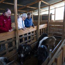 Piñera anticipa desplazamiento de población al sur debido a la crisis hídrica que afecta al país