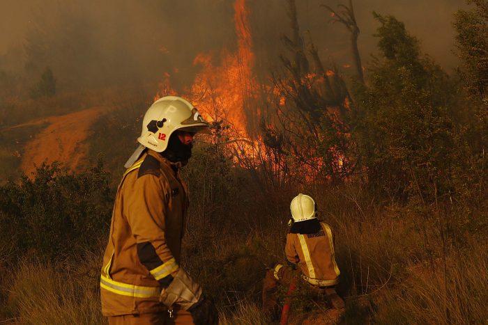 Onemi anunció alerta roja en Valparaíso por incendio forestal en Curauma