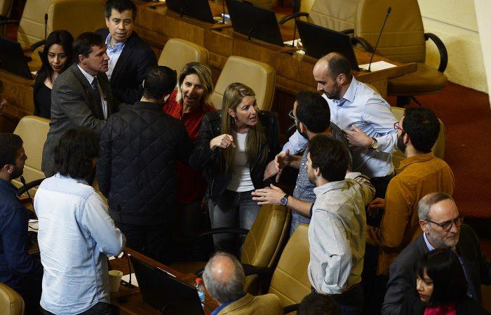 Ánimos al rojo vivo: polarización en la Cámara de Diputados marcó la sesión en que se aprobó la rebaja de la tarifa del transporte