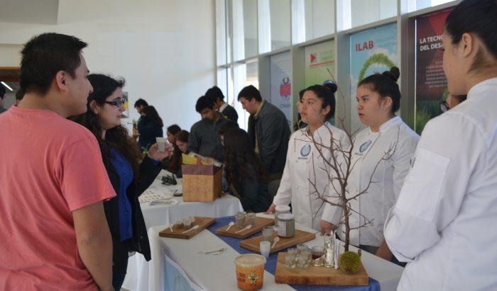 Alumnas de Santa Bárbara ganan concurso con emprendimiento a base de piñón