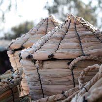 Tejido en Totora: Artesanos al rescate del patrimonio y la sustentabilidad