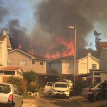 Alerta roja en Valparaíso por incendio forestal que azota el sector de Curauma