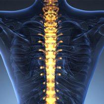 Chile: el país donde la columna vertebral envejecesin cobertura médica