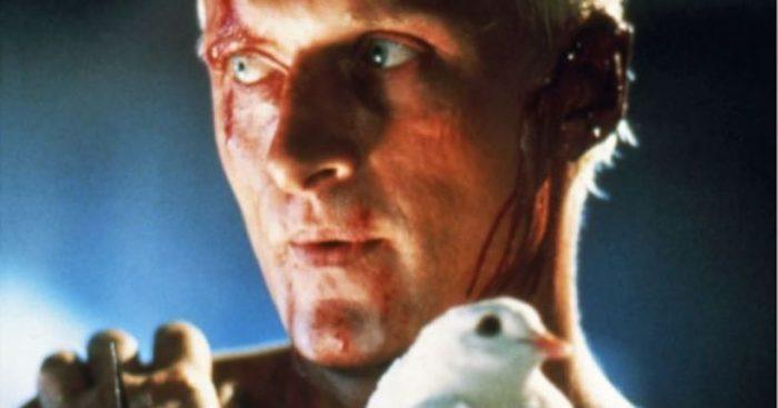 Blade Runner: 5 predicciones tecnológicas de la película sobre 2019 que se hicieron realidad, resultaron equivocadas o están por cumplirse