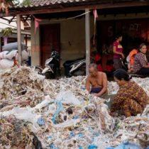 Contaminación por plástico: el país en el que comer huevos puede envenenarte
