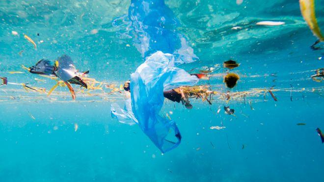 El paraíso turístico en el que hay 7 veces más plástico que peces