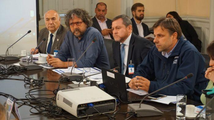 Asociación de Municipalidades realizará consulta ciudadana sobre nueva Constitución en 330 comunas