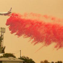 Múltiples de incendios forestales arrasan 575.000 hectáreas en Australia