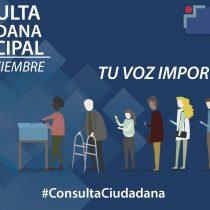 Sedes de votación para consulta ciudadana municipal incluirá cementerios, playas, ferias y farmacias