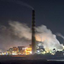 """Greenpeace y nueva constitución:""""La protección medioambiental debe ser una de las prioridades"""""""
