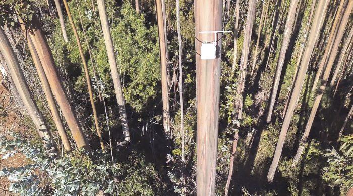 Desarrollan solución IoT para detección temprana de incendios