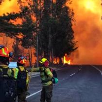 Se reactiva incendio que afecta a la comuna de Quintay, en la región de Valparaíso