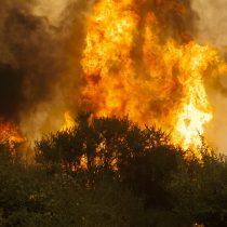 Incendios forestales en Chile: una gobernanza incompleta