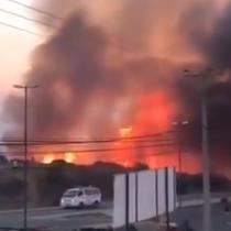 Incendio forestal azota el sector de Miraflores Alto en Viña del Mar