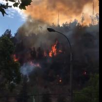 Intendencia decreta alerta roja en Providencia por incendio que azota ladera del Cerro San Cristóbal