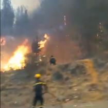 Incendio forestal descontrolado en la Ruta 68 obliga a cortar el tránsito en ambos sentidos