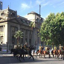 Preocupación por uso de caballos en manifestaciones