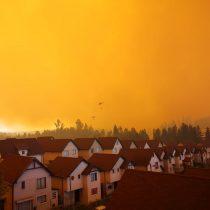 Incendio forestal obliga a evacuar casas en Curauma