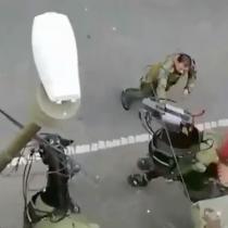 Denuncian maltrato a caballo policial en Concepción