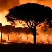 El severo calentamiento social y la crisis climática: lo que estamos legando a las futuras generaciones
