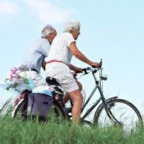 Seminario longevidad saludable: los telómeros y las principales causas del envejecimiento en Chile