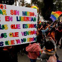 Nuevo episodio de violencia homofóbica: Movilh se reunió con la delegación de la ONU para denunciar los hechos