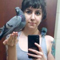 Qué tan cierto es que las palomas son