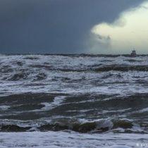 COP25: Informe revela que disminución del oxígeno en los océanos es una amenaza para la pesca y las especies