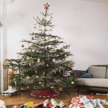 Navidad: una celebración más ecológica