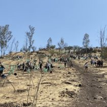 #6DNow: el día de la  Acción Mundial por el Clima Día que Chile encabeza
