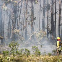 Fisco deberá pagar millonaria indemnización a familiares de brigadistas de la Conaf que fallecieron en incendio del 2017