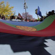Comunidades mapuche anuncian instalación de nuevo gobierno independiente desde el río Biobío al sur