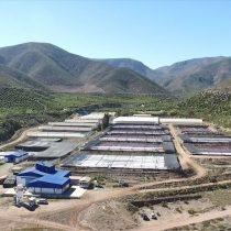 Innovando en el cultivo de microalgas en el Valle del Elqui
