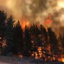 Alerta Roja en Valparaíso por incendio forestal en la localidad de Placilla