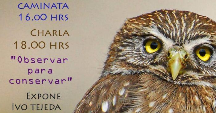 """""""Observar para conservar"""": caminata y observación de aves en Limache"""