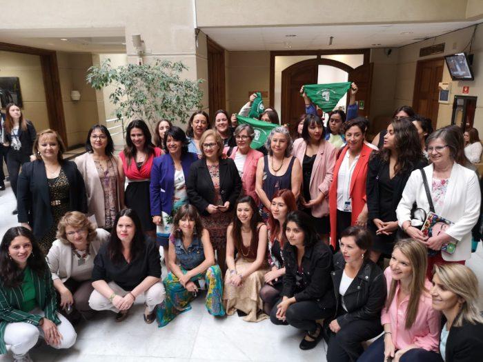 """""""Nunca más sin nosotras"""": diputadas y organizaciones de mujeres interpelan a los partidos políticos para que órgano constituyente sea paritario"""