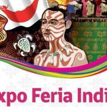 Expo Feria Indígena 2019 en Parque Los Domínicos