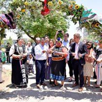 Con llamados a la unidad y al reconocimiento de los pueblos originarios se inauguró la Expo Feria Indígena Conadi 2019
