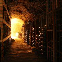 Dos vinos chilenos elegidos como las mejores vinos de guarda del mundo