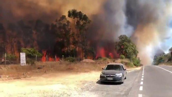 Decretan Alerta Roja en San Pedro de Melipilla por incendio forestal cercano a sectores habitados