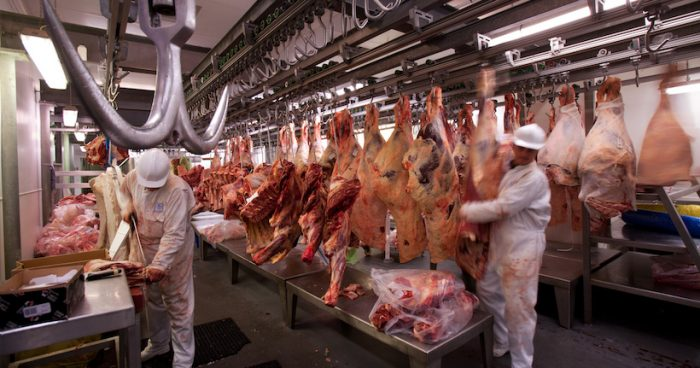 COP25: La ciencia aboga por reducir el consumo de carne contra la crisis climática