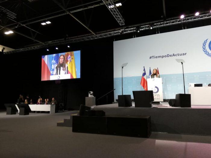 """Ministra Schmidt pide diálogo y """"transición justa"""" para resolver crisis social y ambiental"""