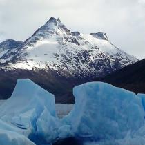 Dos científicos chilenos obtienen becas de National Geographic para financiar sus investigaciones