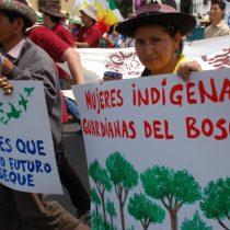 Mujeres indígenas reclaman su lugar al frente de la lucha climática