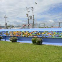 """""""Mono"""" González pintó murales junto a las comunidades de San Rosendo y Laraquete"""