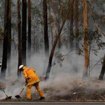 Tenue lluvia da breve respiro ante incendios en Australia