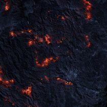 Incendios forestales: el cambio climático y la deforestación aumentan el riesgo global