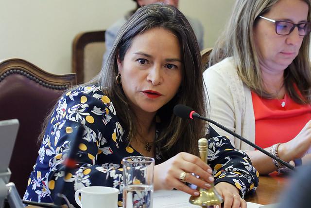 """Diputada Joanna Pérez pidió al Gobierno que """"recapacite y no obstaculice aprobación del voto obligatorio"""""""