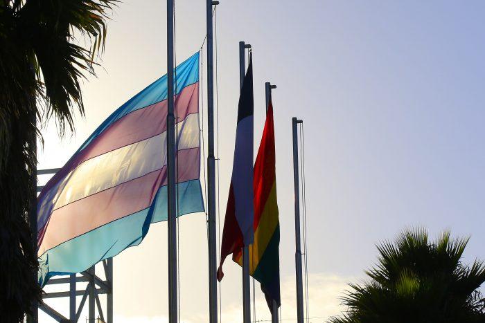 Colectivos LGBTI de América Latina debatieron en un foro online sobre la agenda legislativa y democracia