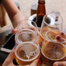 Bierfest en parque Padre Hurtado de La Reina